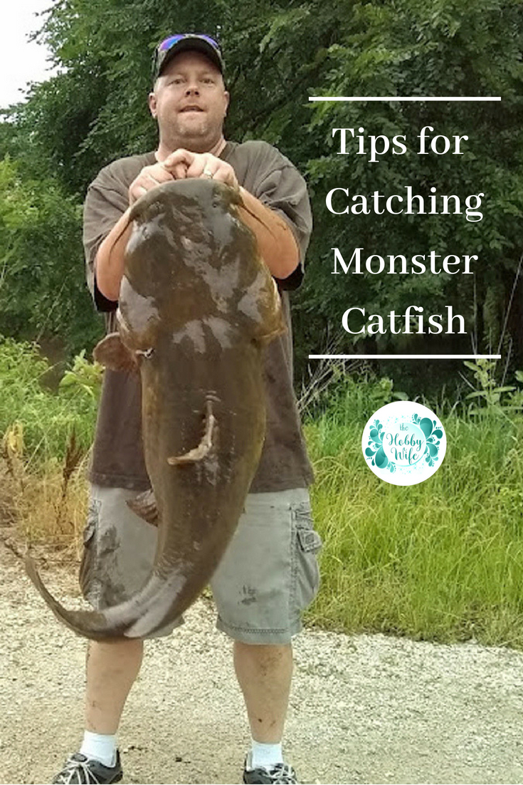 Tips for Catching Monster Catfish on Your Next Fishing Trip