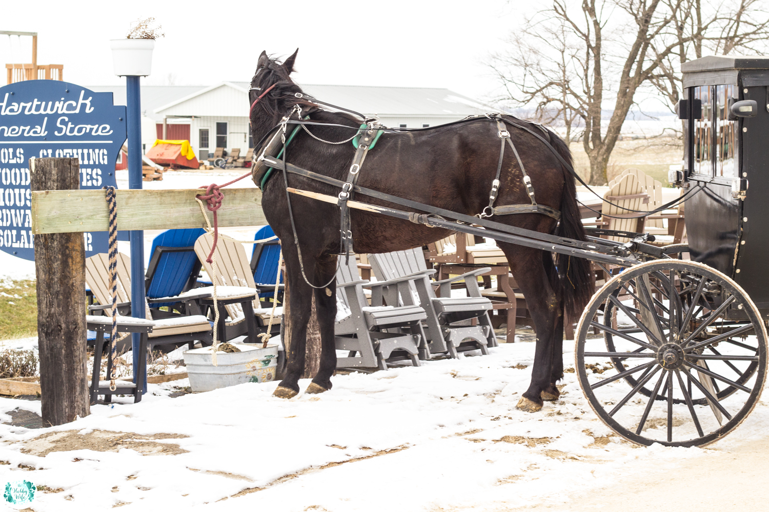 Amish Community of Delaware County, Iowa